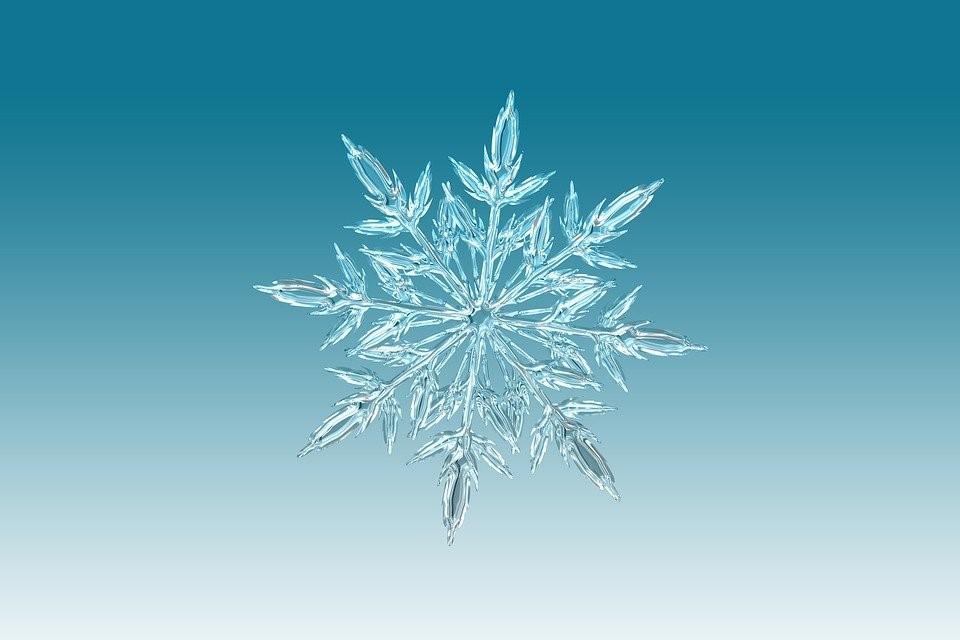 narava, fotografija, snežinka